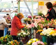 Foto vom Blumenstand auf dem Tibarg Wochenmarkt in Hamburg-Niendorf