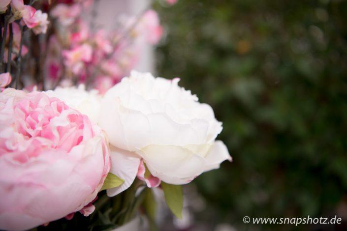 Rosen von Blumen Tomfort