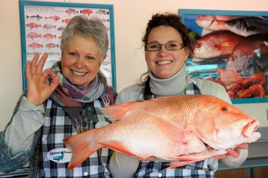 Große Auswahl an Frischfisch